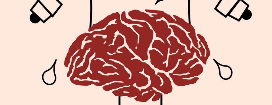mediteren brein